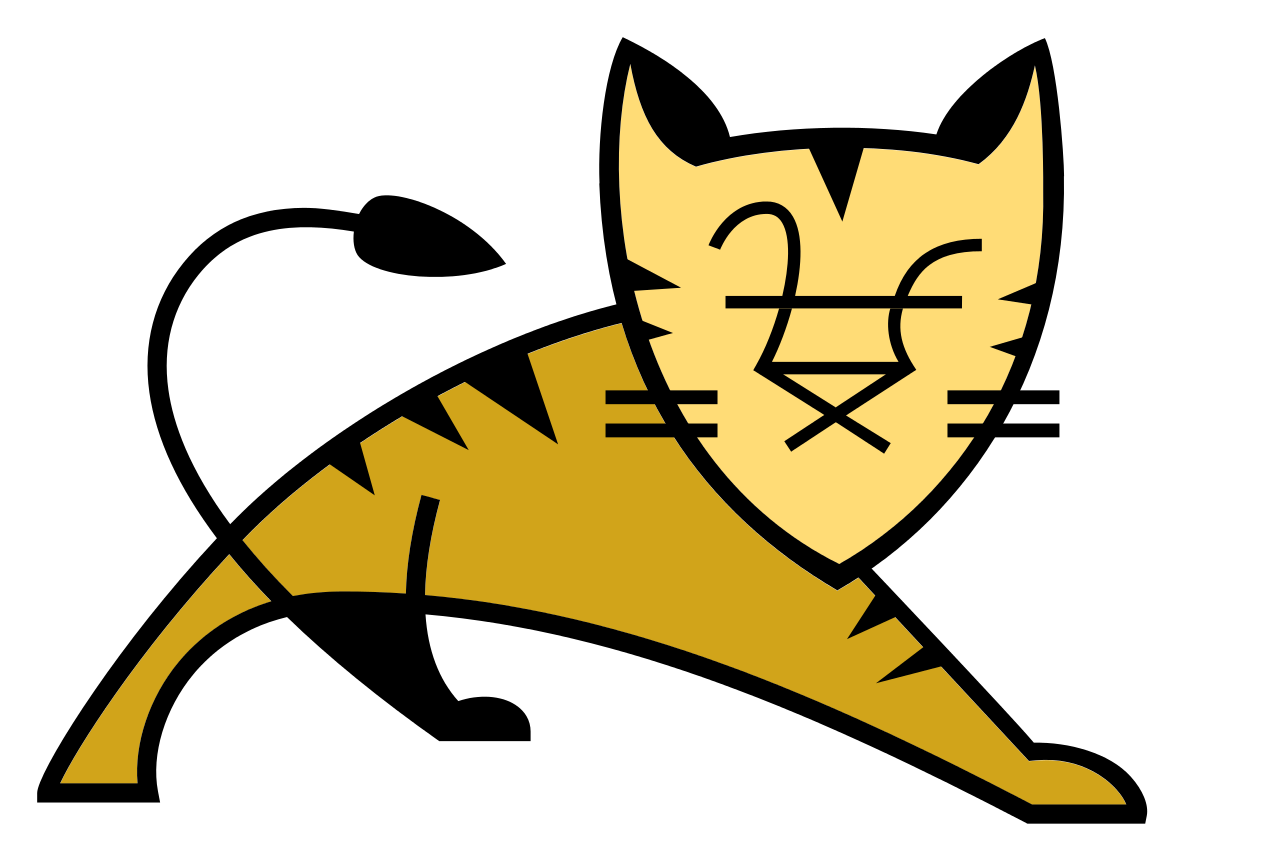 Apache Tomcat container tuning services for performance and stability.